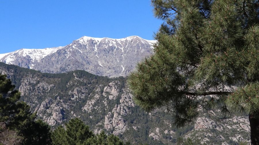 View of corsican mountain